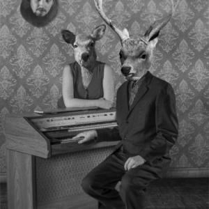 deer_organ